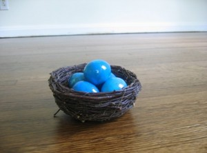 blue eggs in new home